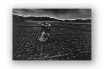 Eikoh Hosoe. Kamaitachi (1969, reprints: 2005 and 2009).