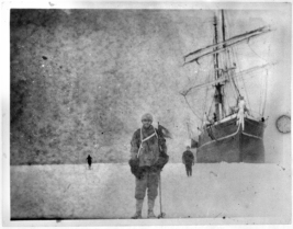 Nzb -Unknown Antarctic1